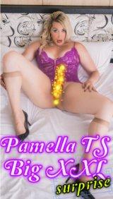 Pamella Moss TS - escort in Aberdeen