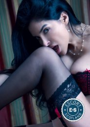 Book a meeting with Sofi in  today
